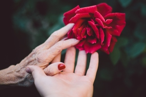 Hand in hand with a rose